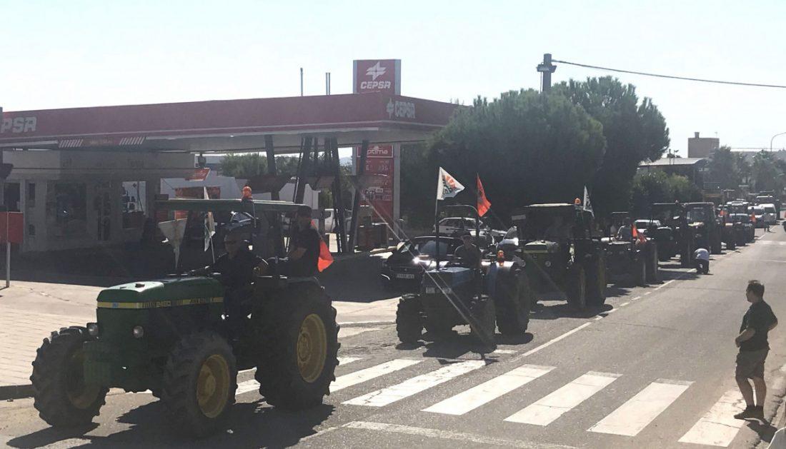 AionSur Tractores_aznalcollar Inician en Aznalcóllar las tractoradas que reclaman mejores precios para la aceituna sevillana Agricultura Economía