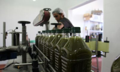 AionSur aceite-enoro-400x240 COAG felicita a los olivareros por conseguir que se autorice el almacenamiento privado de aceite de oliva Agricultura