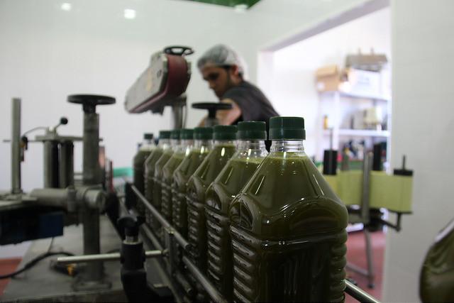 AionSur aceite-enoro COAG felicita a los olivareros por conseguir que se autorice el almacenamiento privado de aceite de oliva Agricultura