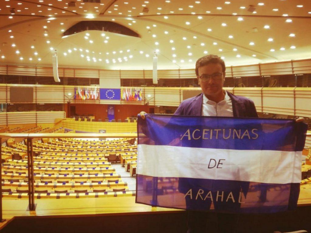 "AionSur aceitunas-Arahal-Parlamento-1024x768 La eurodiputada Clara Aguilera asegura a COAG que la IGP ""saldrá adelante"" Agricultura"