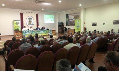 AionSur asaja-sevilla-jornadas-400x240 Retraso en la campaña del olivar y medidas contra aranceles de EEUU, ejes de las XXXVI Jornadas de Aceituna de Mesa Agricultura