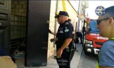 AionSur droga-policia-Sevilla-400x240 Desmantelada en Sevilla un plantación de marihuana cerca de la circunvalación de la S-30 Sucesos