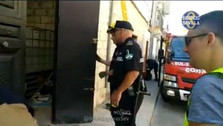 AionSur droga-policia-Sevilla Desmantelada en Sevilla un plantación de marihuana cerca de la circunvalación de la S-30 Sucesos