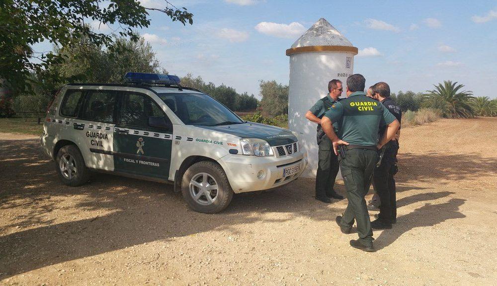 AionSur vigilancia-Arahal-verdeo-1000x576 Los agricultores vuelven a estar preocupados por los hurtos de aceitunas en el campo Agricultura Economía  destacado
