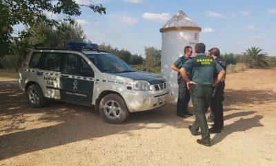 AionSur vigilancia-Arahal-verdeo-400x240 Los agricultores vuelven a estar preocupados por los hurtos de aceitunas en el campo Agricultura Economía  destacado