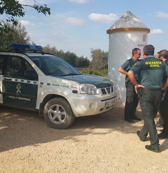 AionSur vigilancia-Arahal-verdeo-560x576 Los agricultores vuelven a estar preocupados por los hurtos de aceitunas en el campo Agricultura Economía  destacado