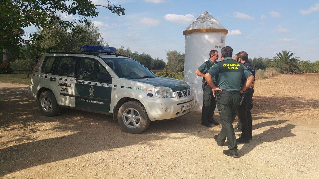AionSur vigilancia-Arahal-verdeo Los agricultores vuelven a estar preocupados por los hurtos de aceitunas en el campo Agricultura Economía destacado