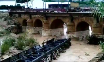 AionSur Aguadulce_tren-400x240 Cortada la vía férrea en toda la Sierra Sur y la Campiña de Sevilla Sucesos