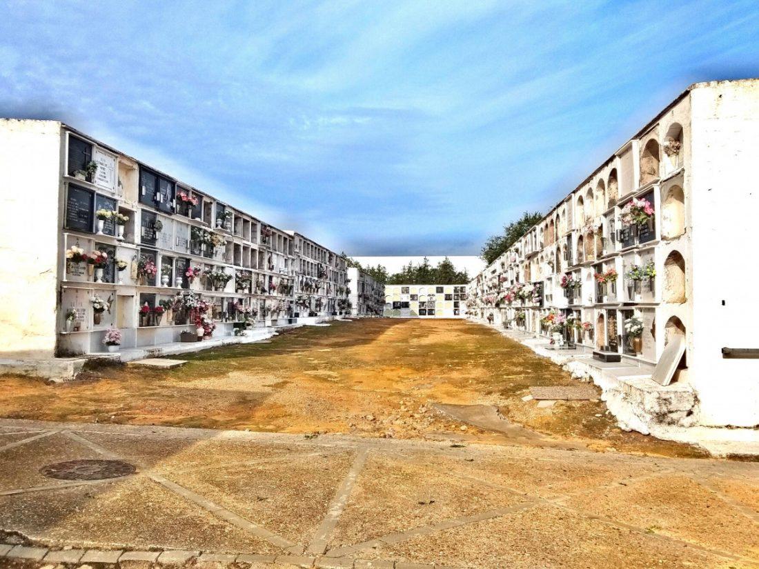 AionSur Alcalá-cementerio-mejoras Ciudadanos de Alcalá de Guadaíra denuncia dejadez en el Cementerio Municipal Alcalá de Guadaíra