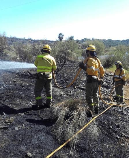 AionSur infoca-incendio-compressor El infoca envía medios a Badajoz para luchar contra un incendio forestal Incendios Forestales Sucesos
