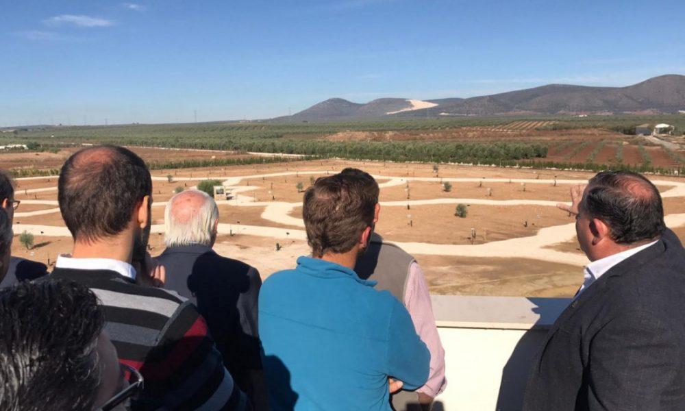 AionSur parque-olivar-1000x600 La Roda de Andalucía abre el parque que tendrá todos los olivos del mundo La Roda de Andalucía Provincia