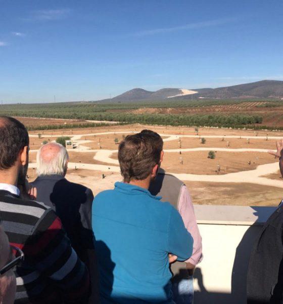 AionSur parque-olivar-560x600 La Roda de Andalucía abre el parque que tendrá todos los olivos del mundo La Roda de Andalucía Provincia