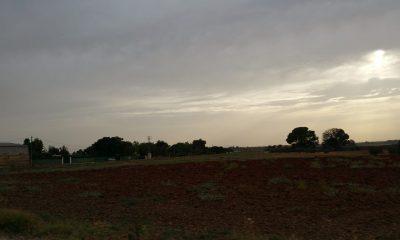 AionSur viviendas-ilegales-sentencia-400x240 El TSJA anula una modificación urbanística aprobada para eliminar protecciones del suelo rústico Arahal