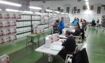 """AionSur concurso-canario-Arahal-2018-400x240 Casi 2.500 ejemplares participan en el XX Concurso Ornitológico """"Ciudad de Arahal"""" Deportes"""