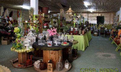 AionSur semillería-jardinería-Arahal-400x240 Semillerías que mantienen la tradición de los pueblos Sin categoría  destacado