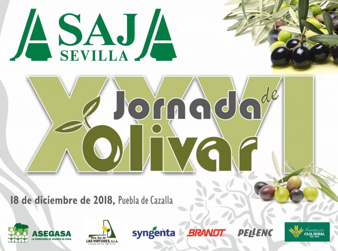 AionSur Jornada-Olivar-ASAJA-Sevilla La situación del olivar sevillano, a debate en unas jornadas organizadas por ASAJA Agricultura Economía