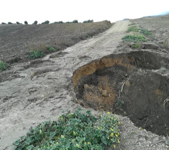 AionSur SaucejoCaminos1-560x499 El Saucejo necesita aún más de 100.000 euros para arreglar sus caminos El Saucejo Provincia