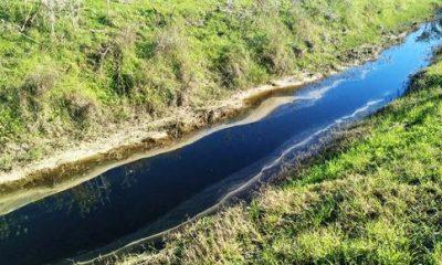 """AionSur cont-arahal-400x240 Ecologistas en Acción denuncia vertidos de balsas de residuos del aderezo que contaminan el arroyo """"Las Monjas"""" en Arahal Medio Ambiente  destacado"""
