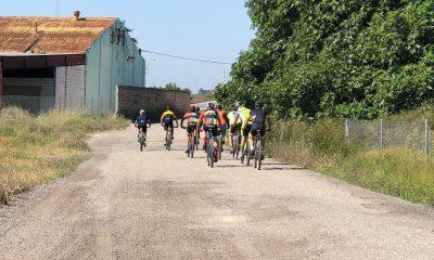 AionSur Bicis1-400x240 Un servicio pionero conectará las bicicletas de Palomares del Río con sus propietarios Sociedad