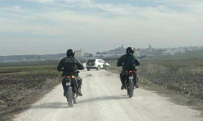 AionSur Marchena-desaparecido-guardia-civil-400x240 Distintas unidades de la Guardia Civil reanudan la búsqueda del desaparecido en Marchena Marchena Sucesos  destacado