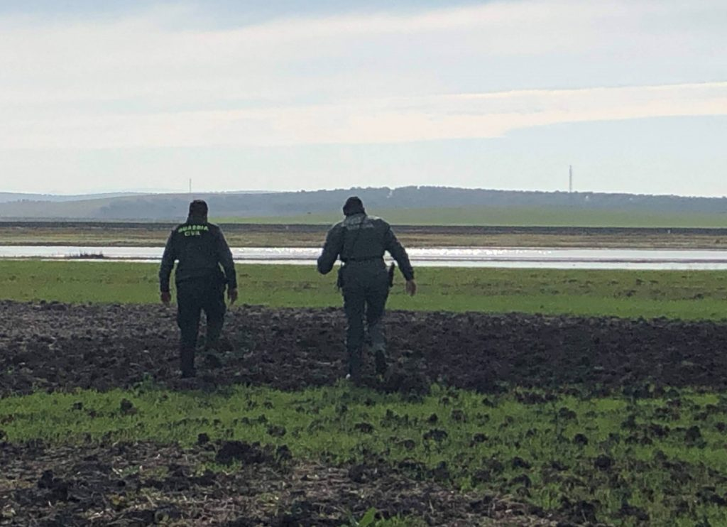 AionSur Marchena-guardia-civiljpg-1024x742 Distintas unidades de la Guardia Civil reanudan la búsqueda del desaparecido en Marchena Marchena Sucesos  destacado