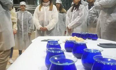 AionSur cooperativa-LasVirtudes-LaPuebla-400x240 Alumnado universitario de Jaén aprende en La Puebla sobre gestión de fincas Agricultura