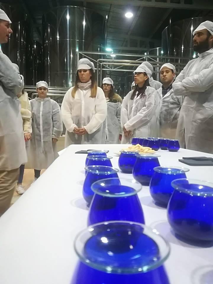 AionSur cooperativa-LasVirtudes-LaPuebla Alumnado universitario de Jaén aprende en La Puebla sobre gestión de fincas Agricultura