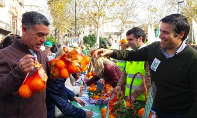 AionSur Naranjas-UPA-400x240 Reparten 2.000 kilos de naranjas para protestar por su bajo precio Agricultura Sevilla