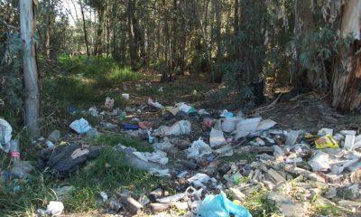 """AionSur basulareza-Arahal-400x240 Medio Ambiente de Arahal organiza una segunda salida para limpiar la """"basuraleza"""" Arahal"""