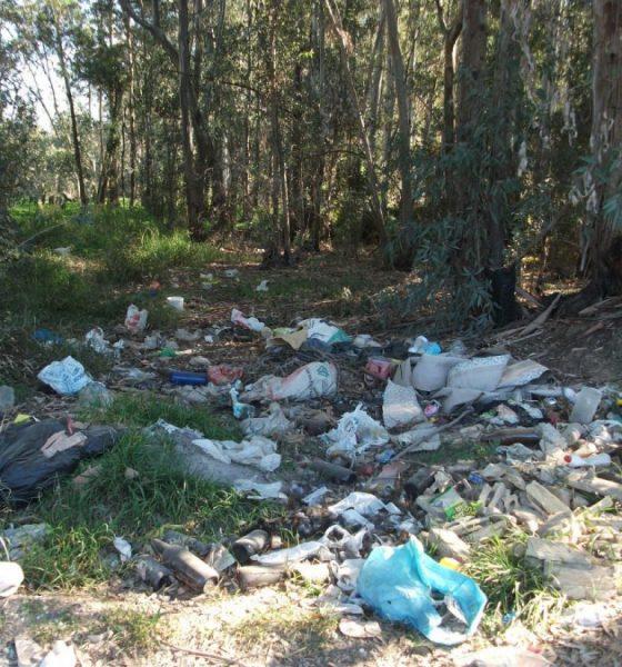 """AionSur basulareza-Arahal-560x600 Medio Ambiente de Arahal organiza una segunda salida para limpiar la """"basuraleza"""" Arahal"""
