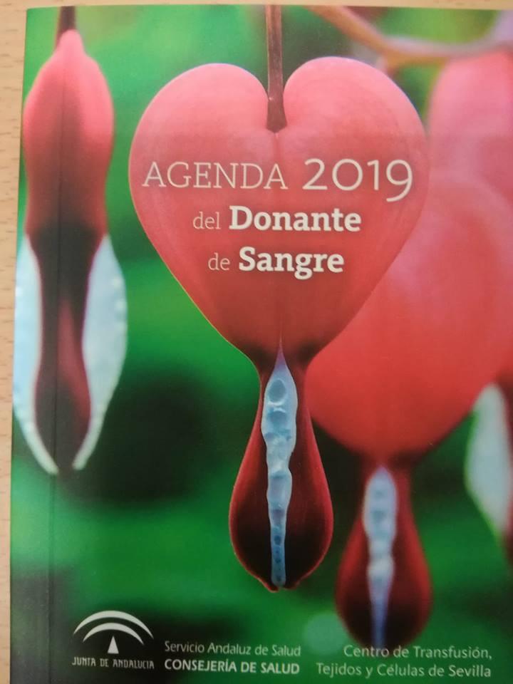 AionSur donantes-sangre-Sevilla Dónde puedes donar sangre si vives en Sevilla y provincia Salud
