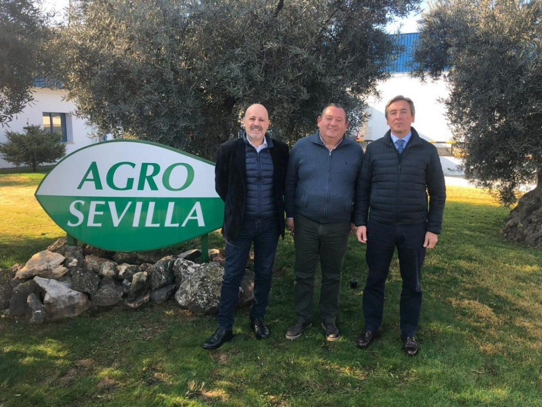 AionSur roda-aceituna La Roda lleva a la UE un informe que defiende la importancia del olivar en Andalucía Agricultura La Roda de Andalucía