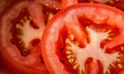 AionSur tomates-400x240 Los tomates de Los Palacios cierran el mejor año de su historia Sin categoría