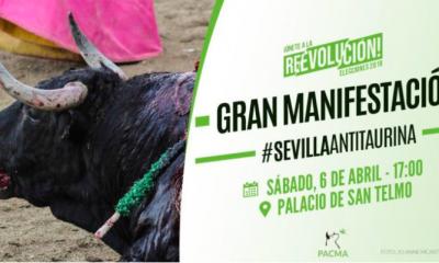 AionSur PACMA-manifa-400x240 Convocan en Sevilla una gran manifestación antitaurina para el 6 de abril Sevilla Toros