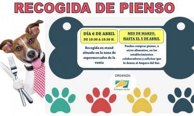 AionSur el-amparo-Arahal-400x240 ¿Por qué es gratificante ser casa de acogida para animales abandonados? Sociedad  destacado