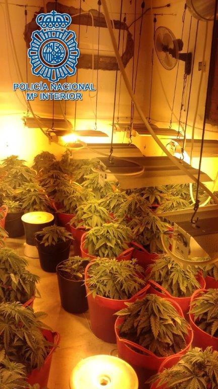 AionSur marihuana-casa-en-construcción Ocho detenidos en una operación contra el tráfico de marihuana en Carmona Carmona Narcotráfico Sucesos destacado