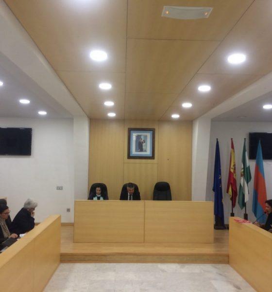 AionSur Pleno-Mairena-Alcor-560x600 Mairena del Alcor repite el sorteo de mesas electorales ante las alegaciones presentadas por sus vecinos Mairena del Alcor Política