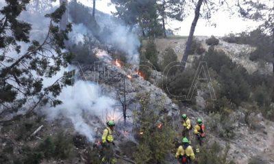 AionSur incendio-forestal-400x240 Un total de 66 hectáreas han ardido este año en Andalucía Andalucía Sucesos