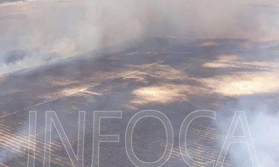 AionSur Incendio-donana-400x240 Arde el paraje Los Mimbrales, en la corona de Doñana Huelva Sucesos  destacado
