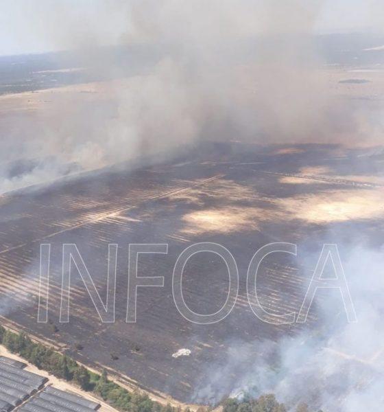 AionSur Incendio-donana-560x600 Arde el paraje Los Mimbrales, en la corona de Doñana Huelva Sucesos  destacado