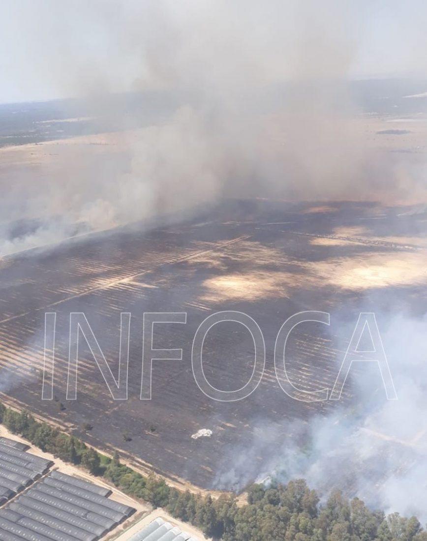 AionSur Incendio-donana Arde el paraje Los Mimbrales, en la corona de Doñana Huelva Sucesos  destacado