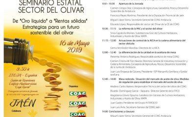 AionSur programa-seminario-coag-400x240 COAG celebra en Jaén con una conferencia su seminario estatal del olivar Agricultura