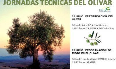 AionSur JORNADAS-TÉCNICAS-DOS-SITIOS-400x240 Expertos en el olivar participan en dos jornadas técnicas a celebrar en Arahal y La Puebla Agricultura Arahal  destacado
