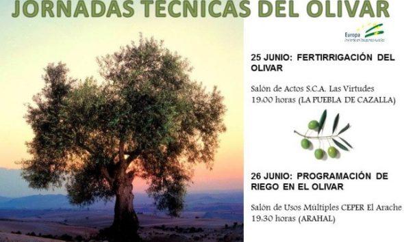 AionSur JORNADAS-TÉCNICAS-DOS-SITIOS-590x354 Expertos en el olivar participan en dos jornadas técnicas a celebrar en Arahal y La Puebla Agricultura Arahal  destacado