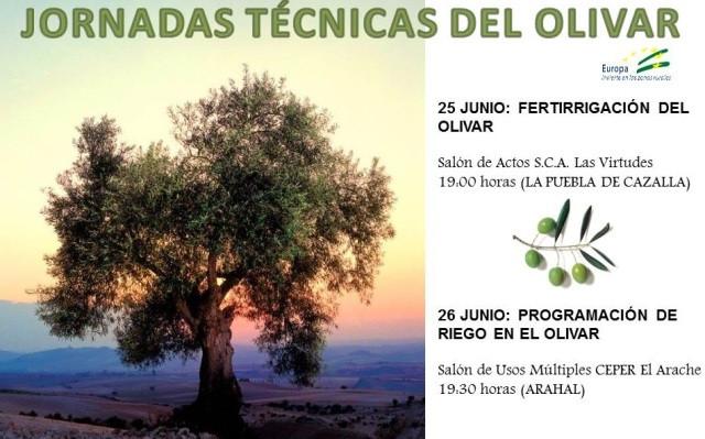 AionSur JORNADAS-TÉCNICAS-DOS-SITIOS Expertos en el olivar participan en dos jornadas técnicas a celebrar en Arahal y La Puebla Agricultura Arahal  destacado