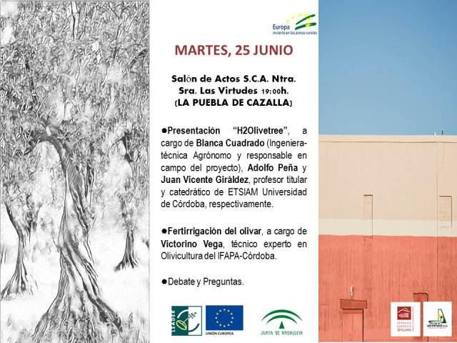AionSur Jornadas-Técnicas-del-Oliva_-Las-Virtudes Expertos en el olivar participan en dos jornadas técnicas a celebrar en Arahal y La Puebla Agricultura Arahal  destacado