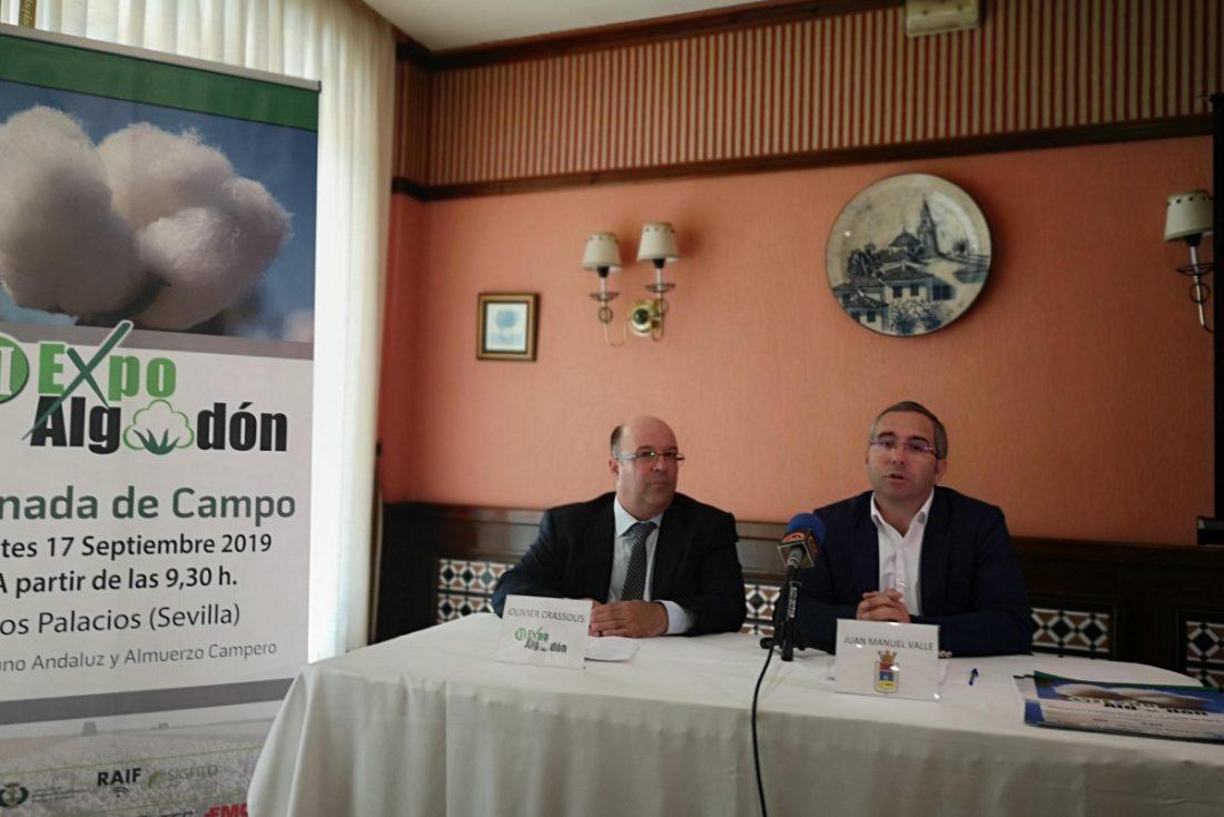 AionSur expoalgodon Los Palacios será sede de la VI edición de Expoalgodón Agricultura Provincia