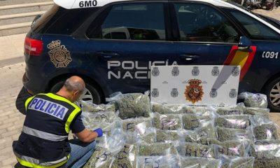AionSur marihuana-policia-400x240 Detenido un vecino de Morón de la Frontera con más de 200 plantas de marihuana en su parcela Morón de la Frontera Narcotráfico Sucesos