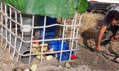 AionSur 17469c4a-932c-407b-b9c4-5b9ea1cbf888-400x240 Los cazadores de Arahal instalan zonas en el campo con comida y agua para los animales en los días de intenso calor Arahal  destacado