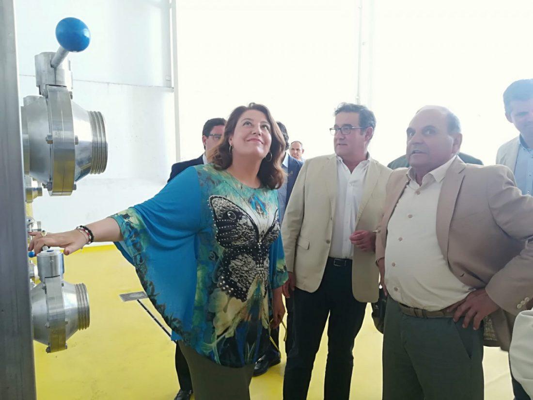AionSur 2-compressor La consejera de Agricultura defiende la cultura del olivar durante una visita a Oleoestepa Agricultura Economía Estepa  destacado
